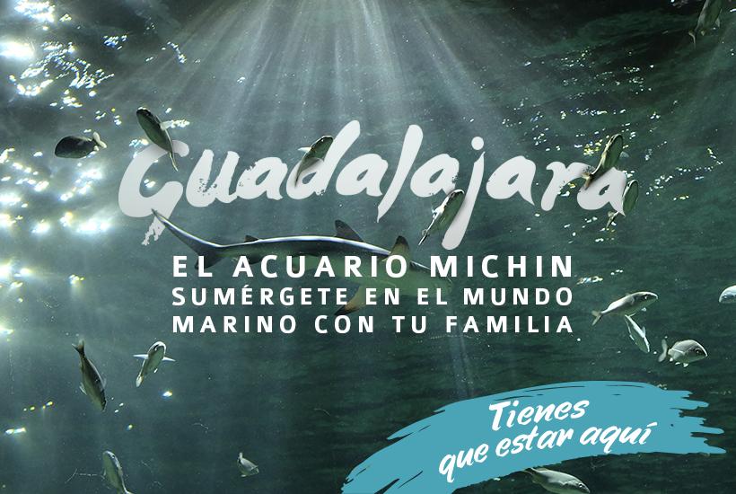 Acuario Michin, una idea de qué hacer en Guadalajara con niños