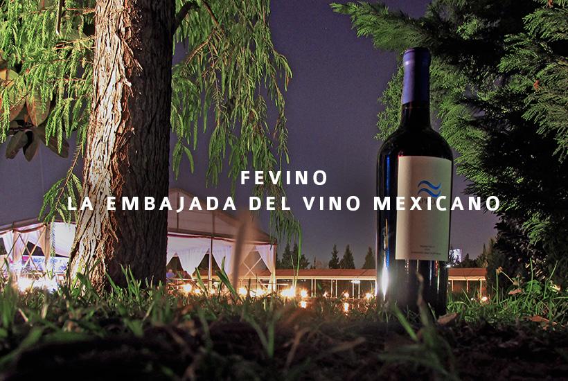 FEVINO, la embajada del vino mexicano