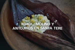 Xokol, molino y antojitos en Santa Tere