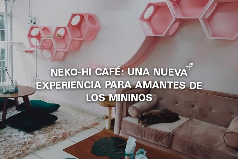 Neko-hi Café: Una nueva experiencia para amantes de los mininos